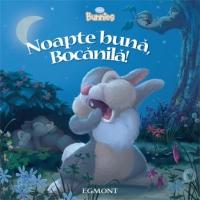 noapte-buna-bocanila-90087