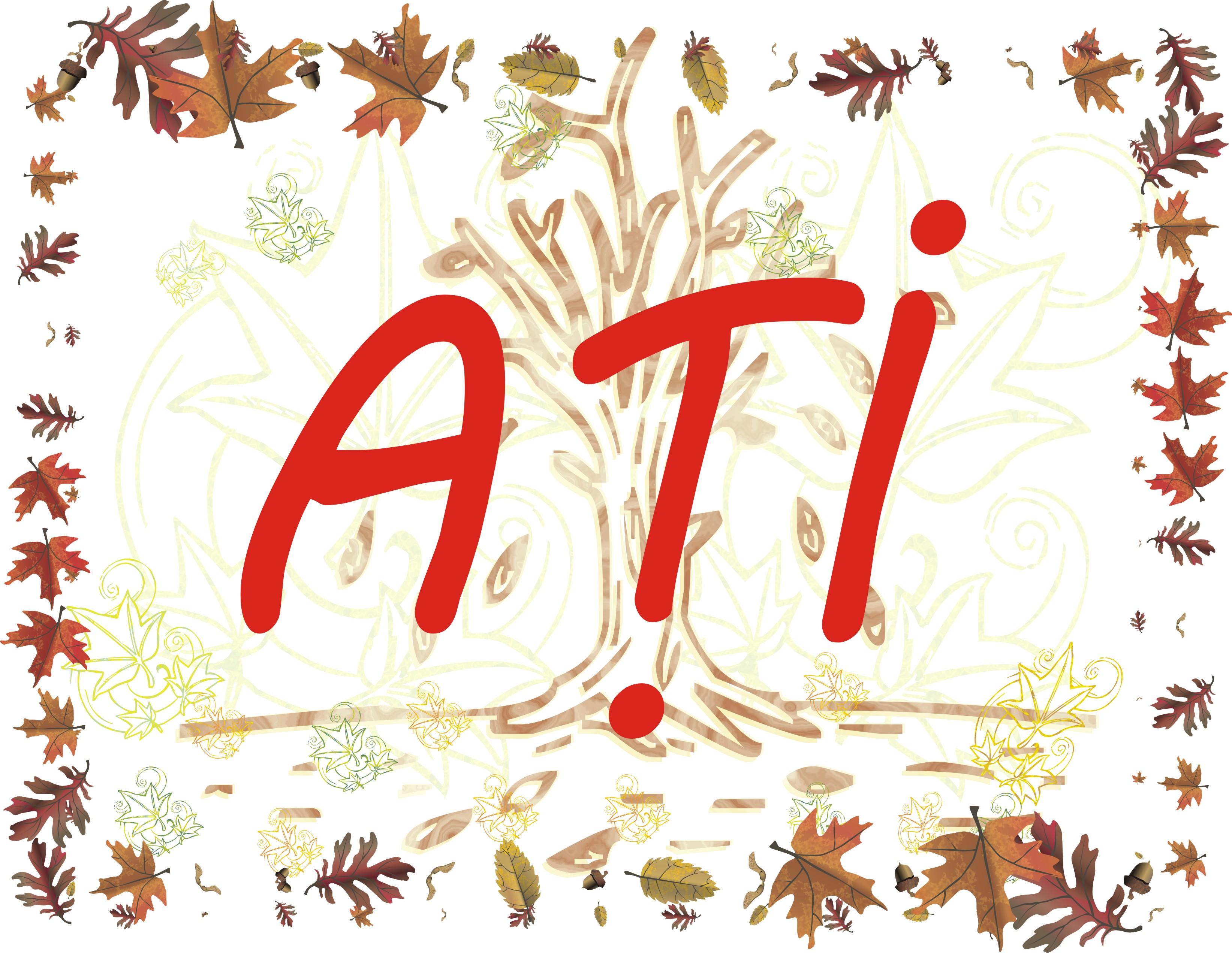 banner scoala ATI