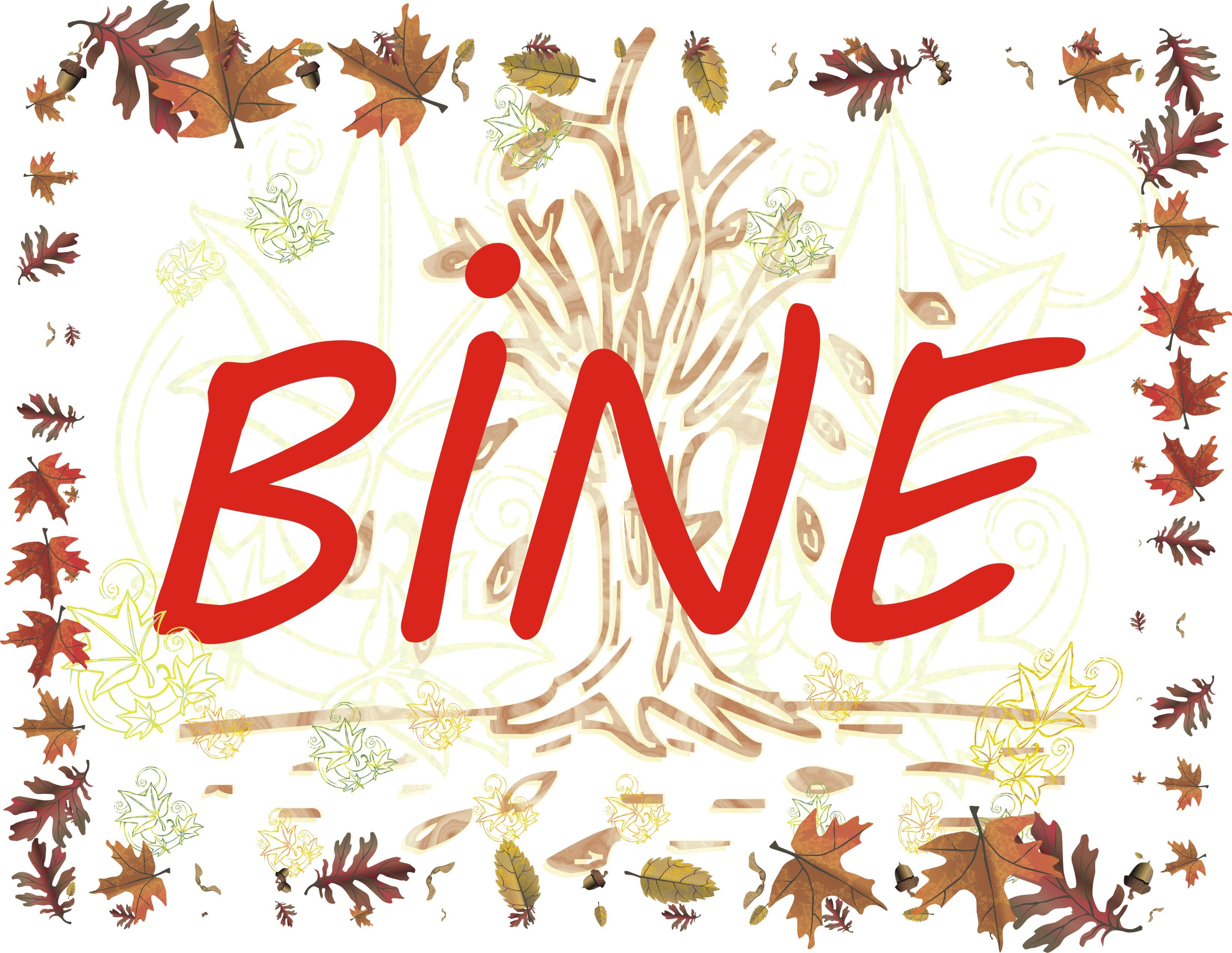 banner scoala BINE